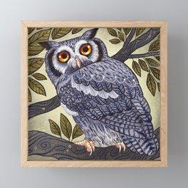 White Faced Owl Framed Mini Art Print