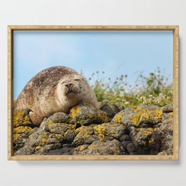 Seal at Dunvegan Castle, Scotland Serving Tray