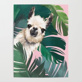Llama with Banana Leaves Poster