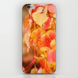 vine red yellow leaves abstract iPhone Skin