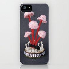 Specimens from Regnum Fungi: Mycena Crocata Slim Case iPhone (5, 5s)