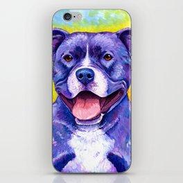 Colorful American Pitbull Terrier Dog iPhone Skin