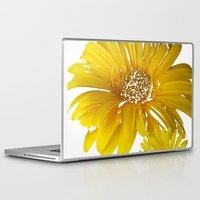 daisies Laptop & iPad Skins featuring Daisies by Regan's World