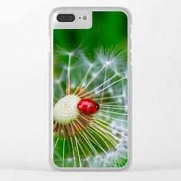 Ladybug Clear iPhone Case