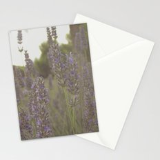 Beez Stationery Cards