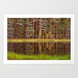 Lake Mirror Art Print