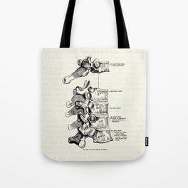 Vintage Anatomy Illustration of the Thoracic vertebrae Tote Bag