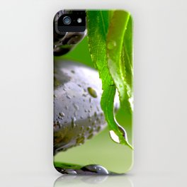 Wellness Stones iPhone Case