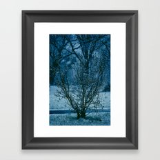 Blue Winter  Framed Art Print