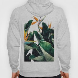 Paradise Bird Hoody