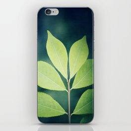 Leaves Nature Photography, Green Leaf Navy Blue Branch Photography iPhone Skin
