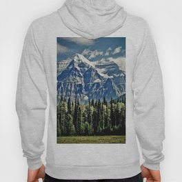 The View of Immense Freedom Hoody