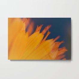 Burst of Color Metal Print
