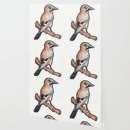 Jaybird Wallpaper