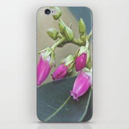 Tiny Pink iPhone Skin