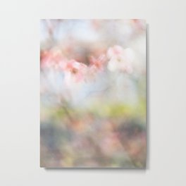 Dogwood Tree 2 Metal Print