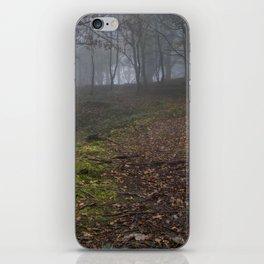 Path Through The Mist iPhone Skin