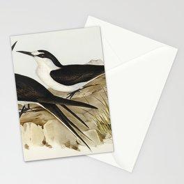 Vintage seabird art Stationery Cards