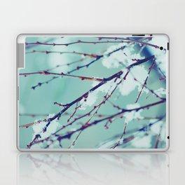 Winter of February Laptop & iPad Skin