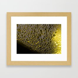 Enlightened Colony | Abstract Macro Photography | Yellow Framed Art Print