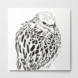 Gyrfalcon (Falcon) Metal Print