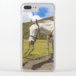 White Horse Tied Up at Cotopaxi National Park Ecuador Clear iPhone Case