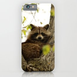 Happy in her hideout iPhone Case