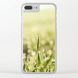 sprouted wheat. dawn sun Clear iPhone Case