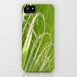 Palm Fan Art iPhone Case