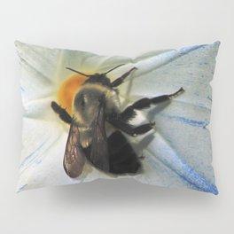 Glory Bee Pillow Sham