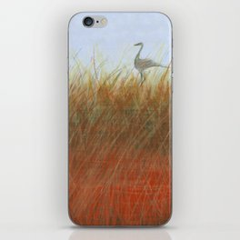 Autumn Marsh iPhone Skin