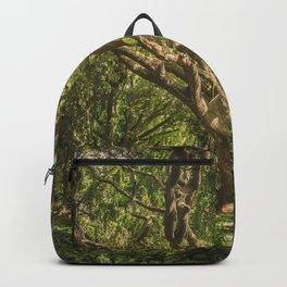 Spirits inside the wood Backpack