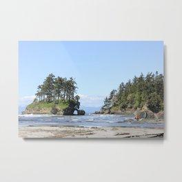 Salt Creek Island Metal Print