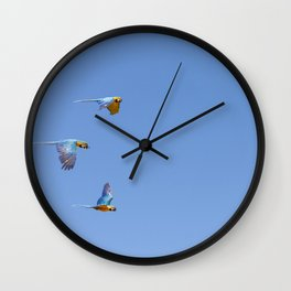 Blue macaws flying under blue sky Wall Clock