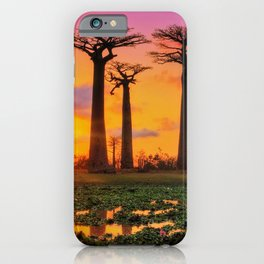 Avenue of the Baobabs, Madagascar iPhone Case