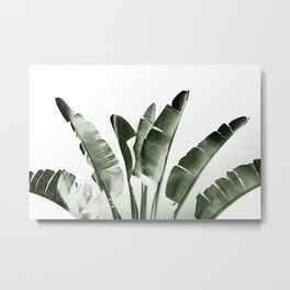 Traveler palm Metal Print