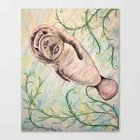 manatee Canvas Prints featuring Manatee by Ginster72