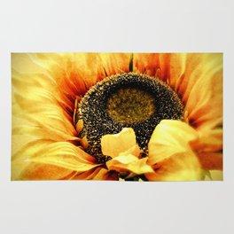 Sunflower A203a Rug
