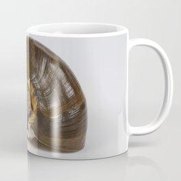 Brown Spiral Shell Coffee Mug