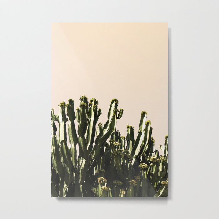 cactus nature x Metal Print