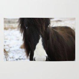 Blue Eye Icelandic Horse Rug