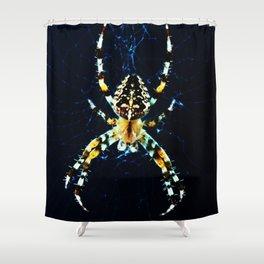 European Garden Spider Shower Curtain