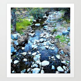 Stream at Dusk Art Print