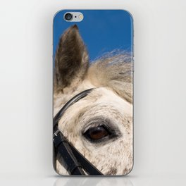 Connemara pony iPhone Skin