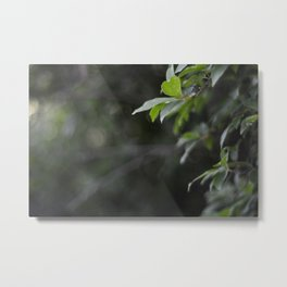 Keep Focused On The Life In Front Of You Metal Print