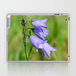 Violet blue Harebell Flower Laptop & iPad Skin