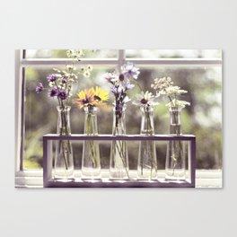 Windowsill Flowers Canvas Print