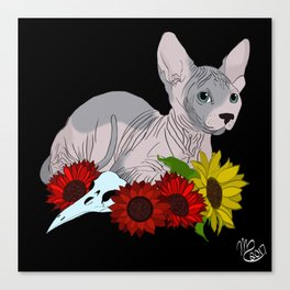 The Hairless Cat Canvas Print