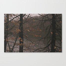 Wampus Pond Canvas Print