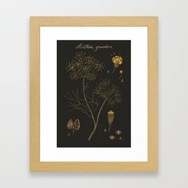 Dill (Dark Background) Framed Art Print